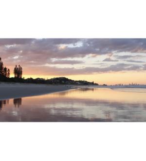 Australia Summer & Autumn Session 2019 (Shell St)